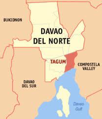 Davao Doctors College Revolvy