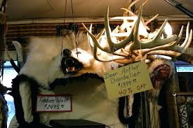 full size of cabelas antler lighting chandelier 9 reion drop dead gorgeous home improvement 24 12