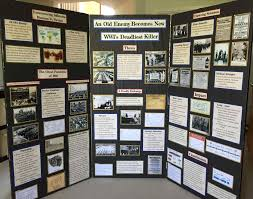 Grade May Information Posters Examples Toretoco Science Fair Display