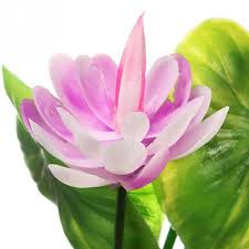 New Home water <b>Artificial</b> Plastic Lotus Flower <b>Grass Plant</b> for Fish ...