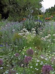 beth to is the grand dame of english gardeners the reigning heir of william robinson gertrude jekyll and painter gardener sir cedris morris