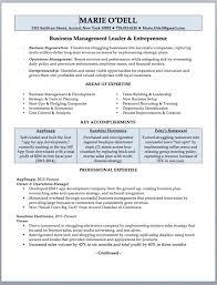 Resume Resume Writing Format Resumes