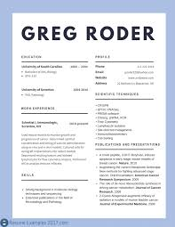 Great Resume Great Resume Examples 100 Creative Resume Ideas 79