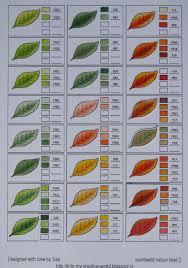 Copic Color Blending Chart Copic Color Blends For Leaves Copic Copic Color Chart