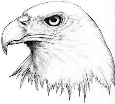 Tetování Orel Bělohlavý