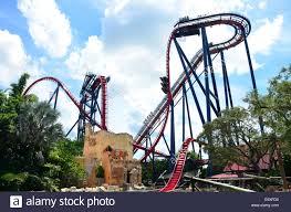 sheikra roller coaster ride at busch gardens ta florida usa
