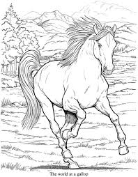 Small Picture 47 best Horse coloring pages images on Pinterest Coloring books