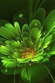 Green Flower iPhone Wallpapers - Top ...