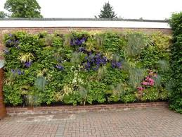 informal green wall indoors. Below: Left; The Hadlow Living Wall Inside And Right; Lighting Units Which Operate Circa 12 Hours On Off Informal Green Indoors