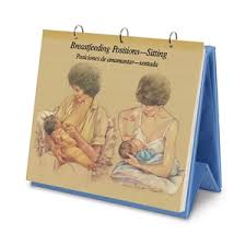 Breastfeeding Chart Collection