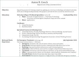 Make A Resume Online Free Fascinating Build A Resume Online Sample Resume 48 Build Resume Online Free Print