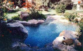 Beautiful Natural Looking Pools Pictures dairiakymbercom
