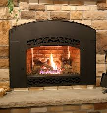 Fireplaces & Fireplace Inserts