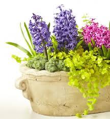 Container Garden Plans For Shade  Home Outdoor DecorationContainer Garden Plans Flowers