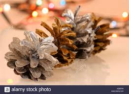 Is It Safe To Spray Paint Christmas Lights Two Pine Cones Sprayed Metallic Silver Spray Paint And Two