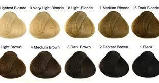 Novacolor Hair Color Chart 28 Albums Of Rpr Hair Colour Chart Explore Thousands Of