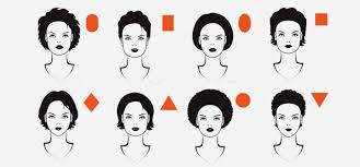 diffe face shapes pinit