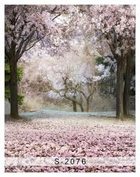Cherry Blossom Backdrop Photography Backdrop Cherry Blossom Trees Children Photo Background