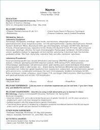 Computer Skills Resume Sample Artemushka Com