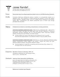 Best Nurse Resume Medical Surgical Nurse Resume Thrifdecorblog Com