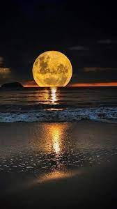 Full moon and sea iPhone 6 Plus ...