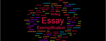 Exemplification Essay Writing Definition Tips And Topics