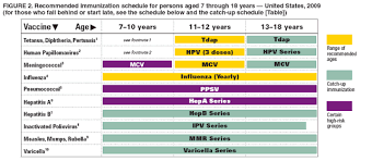 Vaccination Chart For Babies Usa Recommended Immunization Schedules For Persons Aged 0