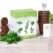 nature s blossom herb garden kit 5 herbs to grow from organic seeds gardening starter set with everything a gardener needs to easily grow 5 plants