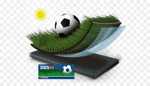 lawn artificial turf koninklijke ten cate nv product rugby artificial grass png 614 515 free transpa lawn png