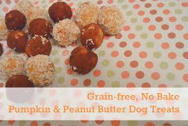 Country Kitchen Dog Treats Carob Dog Treat Recipes Archives Kols Notes