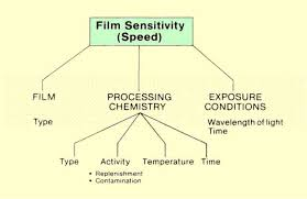 Film Processing Chart The Photographic Process And Film Sensitivity
