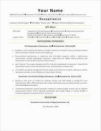 Help Desk Resume Sample Luxury It Professional Resume Template Ideas