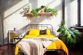 Pflanzen Im Schlafzimmer Darauf Solltest Du Achten Brigittede