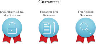 only custom term papers on offer from net a custom paper writing service that delivers