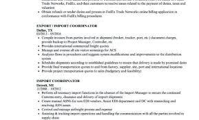 Inspirational Logistic Coordinator Resume Sample Or Import