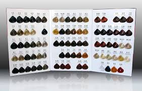 Color Royale Chart Dark Ash Brown 3 1