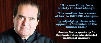 Scalia Quotes Stunning Judge Scalia Quotes On QuotesTopics
