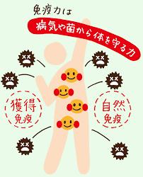 免疫力」を整えてみませんか? | ウイング公式サイト