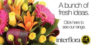 Susan Avery Floral Decorators; Susan Avery Flowers & Event Styling, a  Florist in Woollahra, NSW   Find Me Flowers - Send Christmas Flowers to  Woollahra