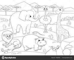Dieren Van Afrika Savanne Vector Kleurplaten Voor Volwassenen