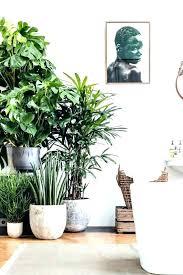 large white indoor plant pots plants pots indoor plant pot grey rattan guide large indoor plant pots best indoor indoor planters home indoor planters indoor