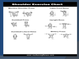 Chest Chart Gym Develop Chest Shoulders Arm Back Triceps N Leg With Help
