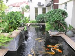 Small Picture Garden Pond Designs Waterfalls Waterfall For Small Garden Pondl