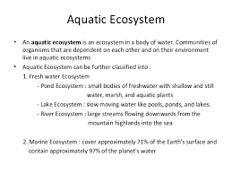 essay about marine ecosystem facts write my essay affordable  essay about marine ecosystem facts