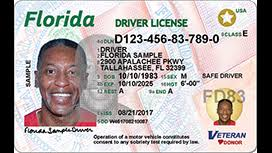 Licenses August Roll To Florida Out In Cards Wftv Driver's Id New
