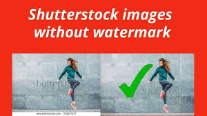Free Shutterstock Images Download Shutterstock Images Without Watermark 2019