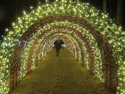 Holiday Celebrations in Portland Oregon