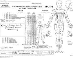 Spinal Cord Injury Chart Punctual Asia Chart Spinal Cord Injury Spinal Cord Injury