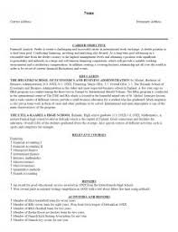Examples Of Resumes   Resume Template Writing Objective Sample     Domainlives