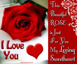 i love you red rose gifs tenor